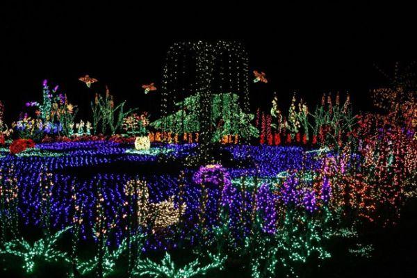 Twinkle Twinkle 22 Light Displays To Make The Season Bright Holiday Lights Display Light Display Christmas Light Displays