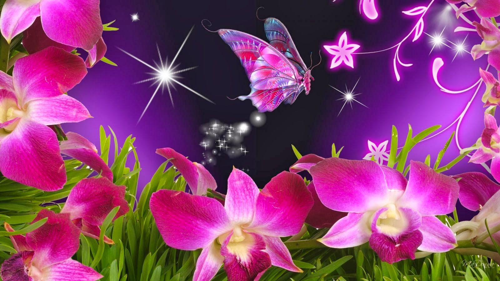 Wallpaper Flowers And Butterflies Beautiful Flowers And