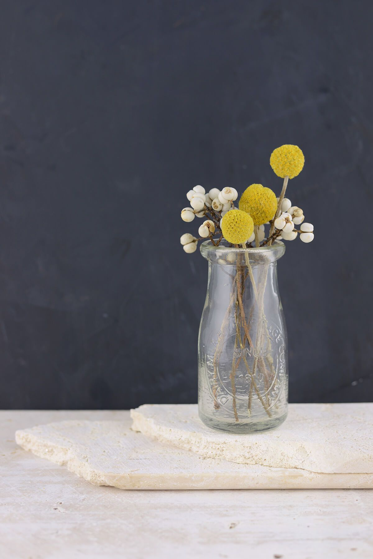 10 Preserved Billy Buttons Craspedia Billy Buttons Dried Flowers Flowers