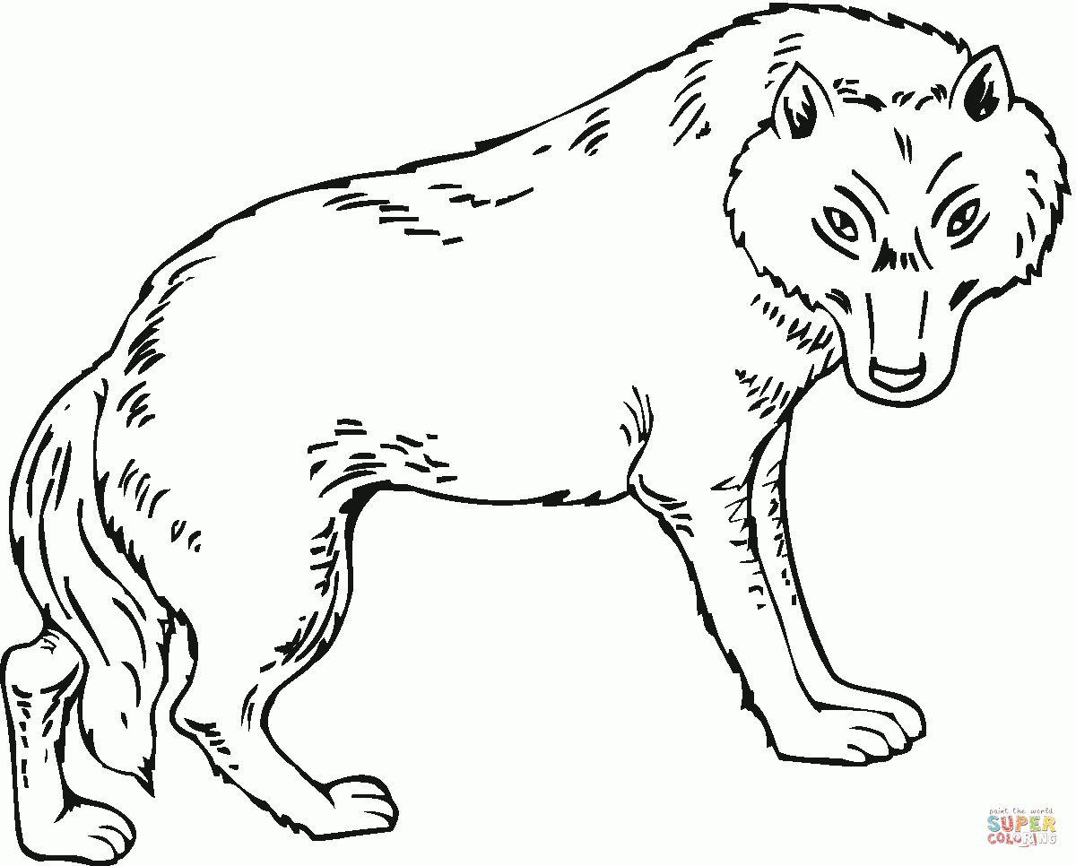 Disegni Da Colorare Animali Feroci Check More At Https