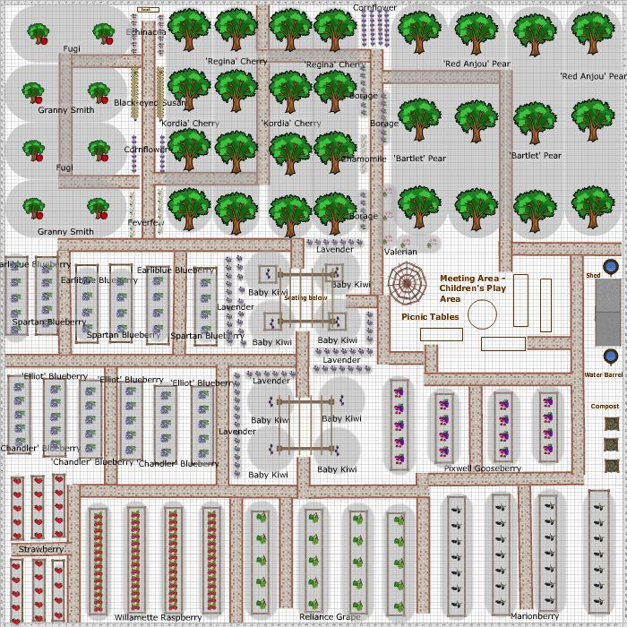 Garden Plan - 2013: Community Fruit Garden | Fruit garden ...