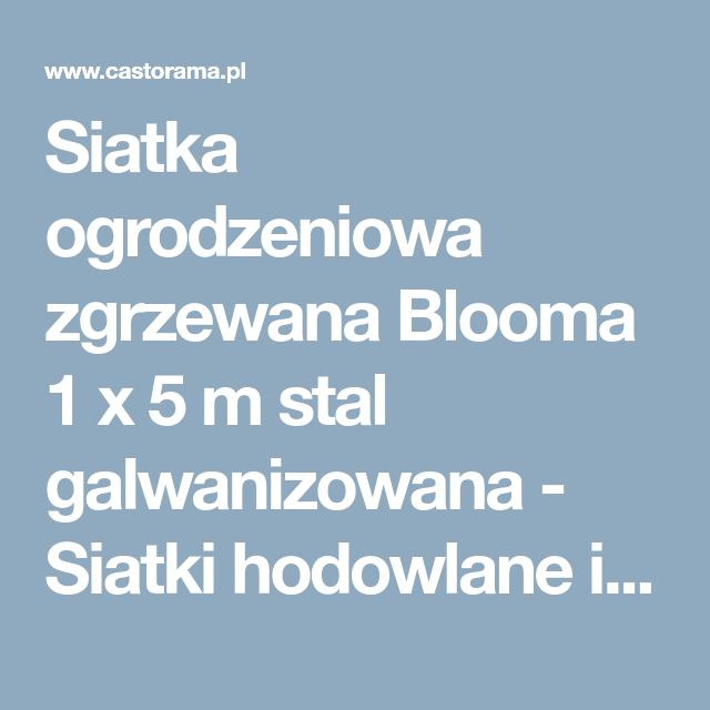 Siatka Ogrodzeniowa Zgrzewana Blooma 1 X 5 M Stal Galwanizowana Siatki Hodowlane I Techniczne Siatki Bramy I Ogrodzen Home And Garden Mobile Boarding Pass