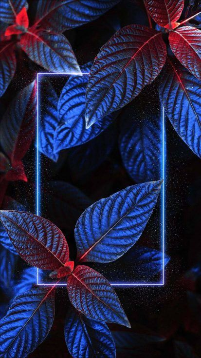 Neon Light Foliage Nature - IPhone Wallpapers