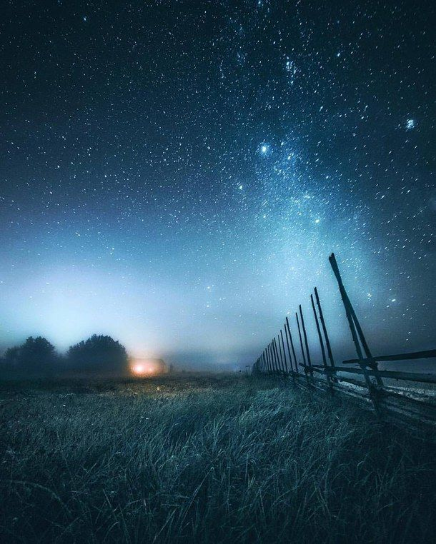 Aesthetic Alternative Background Beautiful Dark Favorites Forest Grunge Hipster Love Nature Night Outdoors Pale Pastel Photography Sky