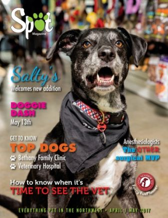 April May 2017 Pet Magazine Veterinary Hospital Animal Behavior