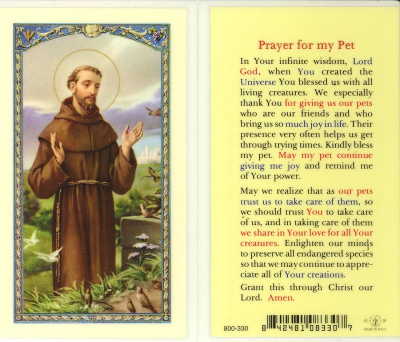 Prayer for My Pet St. Francis Holy Card (800320) 10