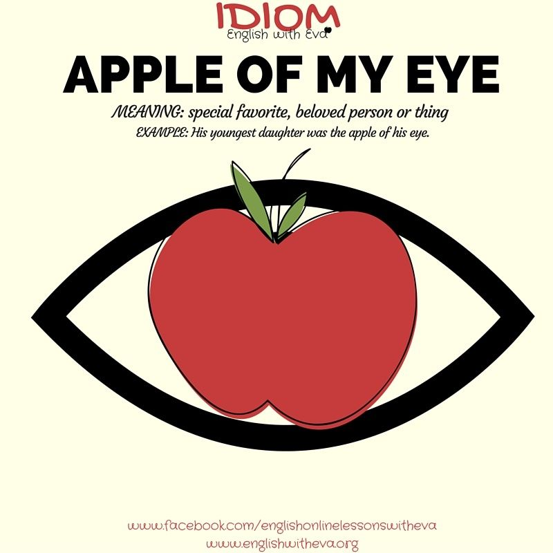 Apple Of My Eyeg 800800 Idioms And Expressions Pinterest