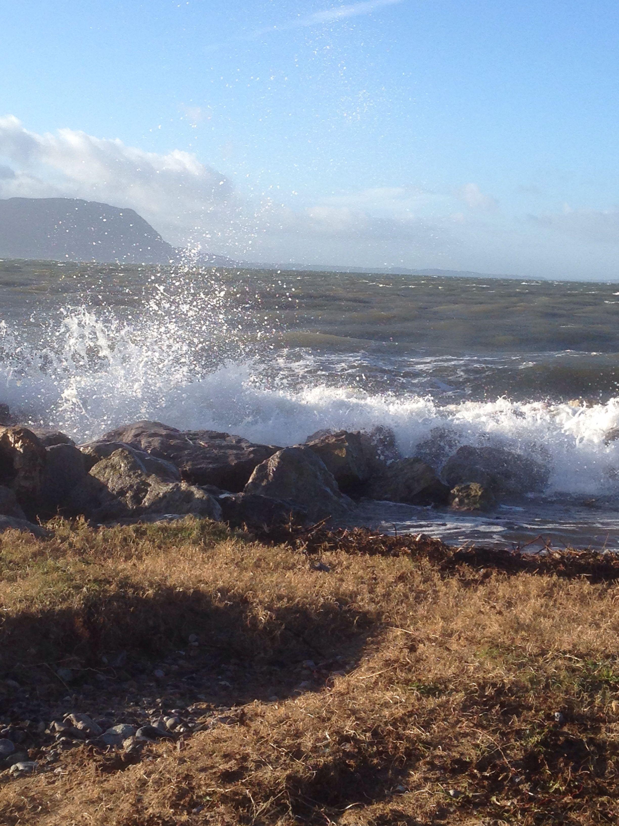 High tide West Shore 2.1.14