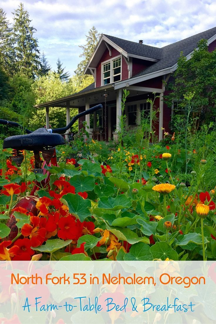 A stay at North Fork 53 in Nehalem, Oregon, a farmto