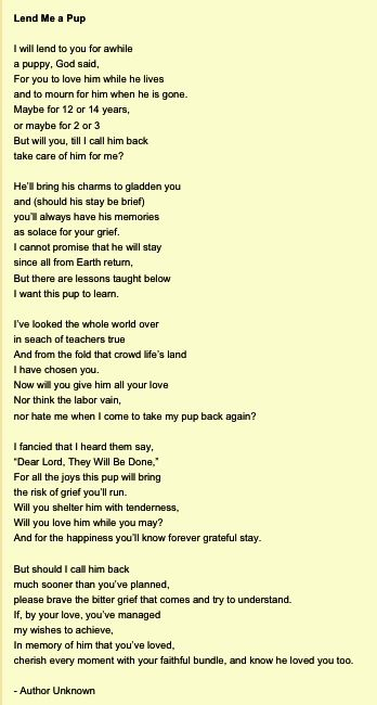 My sister sent me this poem when i loss my Sparky! This had brought so much comf…