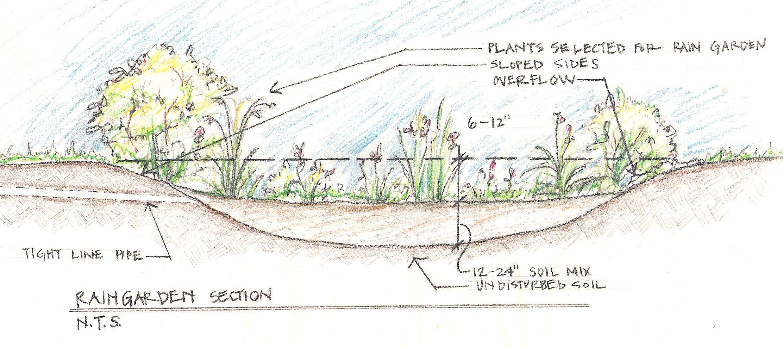 rain garden   Gardening   Rainwater harvesting system ... on rain garden drawings, vegetable garden design sketch, rain garden construction plan view,