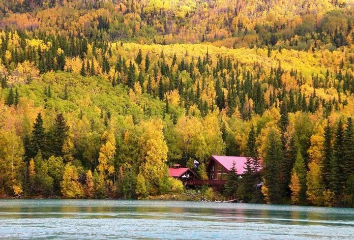 Fall on the Kenai- I Love Alaska