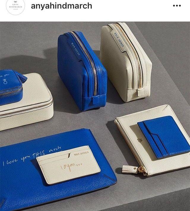 Anya Hindmarsh small leather accessories