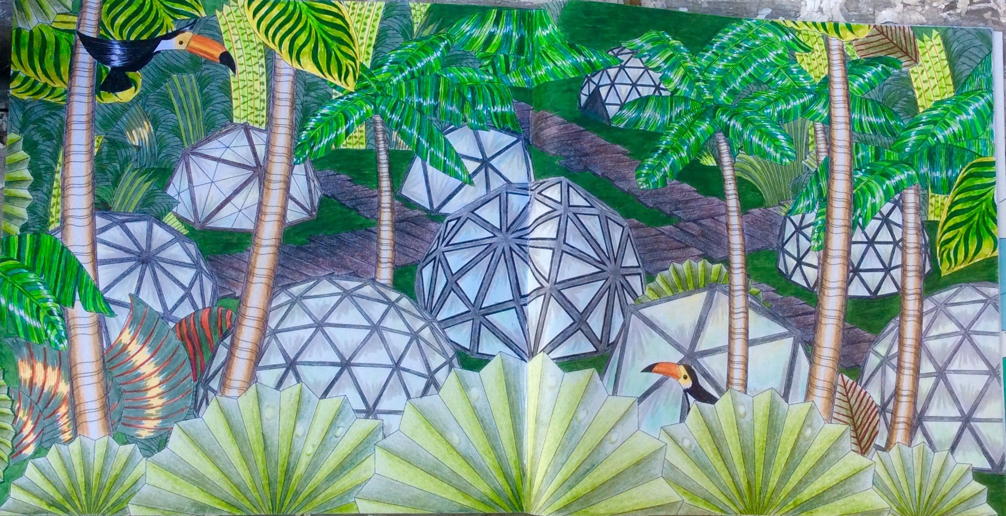 Dream Cities Colouring Book Jungle