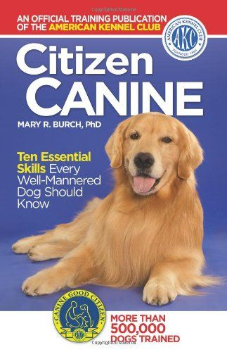 How To Get Your Dog Certified As A Therapy Dog Therapy Dog