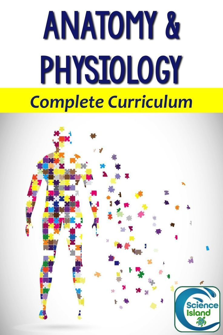 Anatomy and Physiology Complete Curriculum | Science for Secondary ...