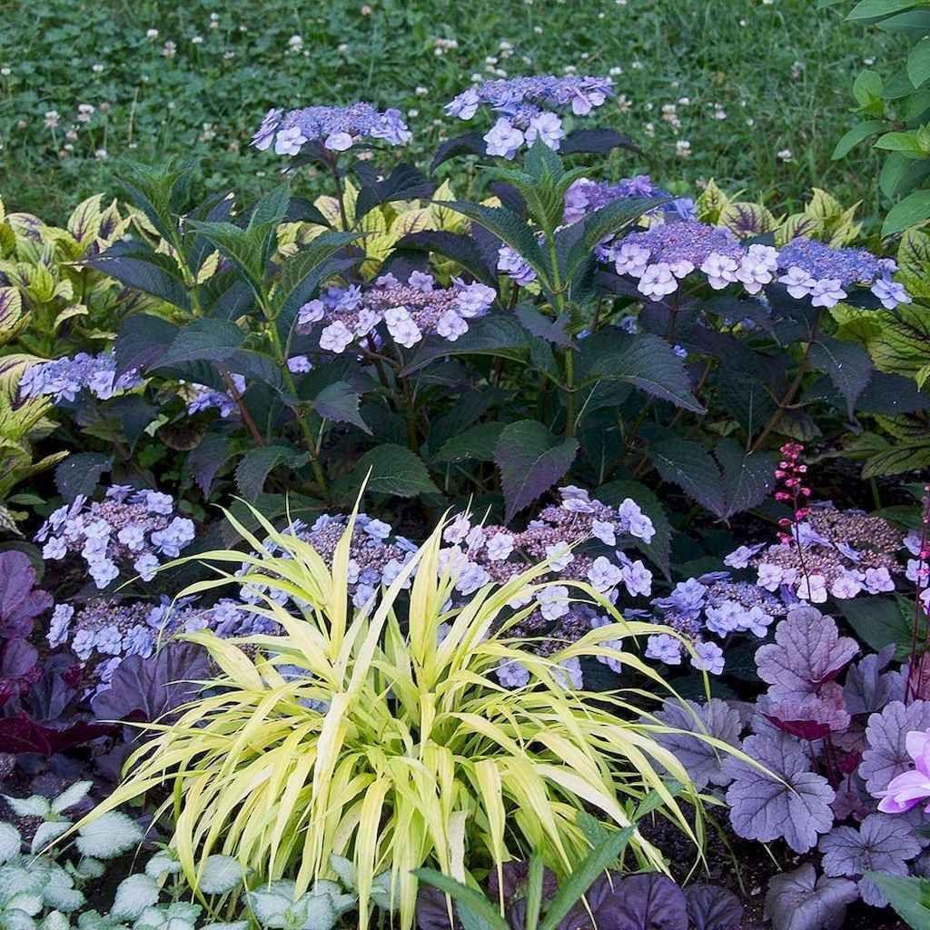 70 Stunning Backyard Vegetable Garden Design Ideas Homekover Shade Garden Small Backyard Landscaping Urban Garden