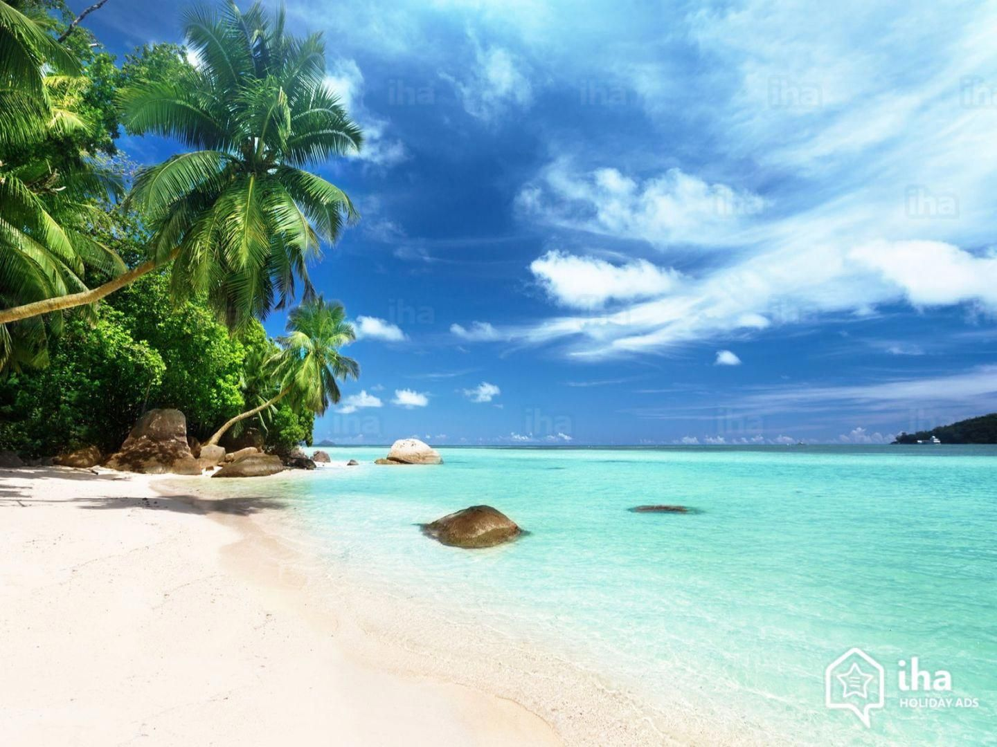 vacation offers   Honeymoon holidays Seychelles