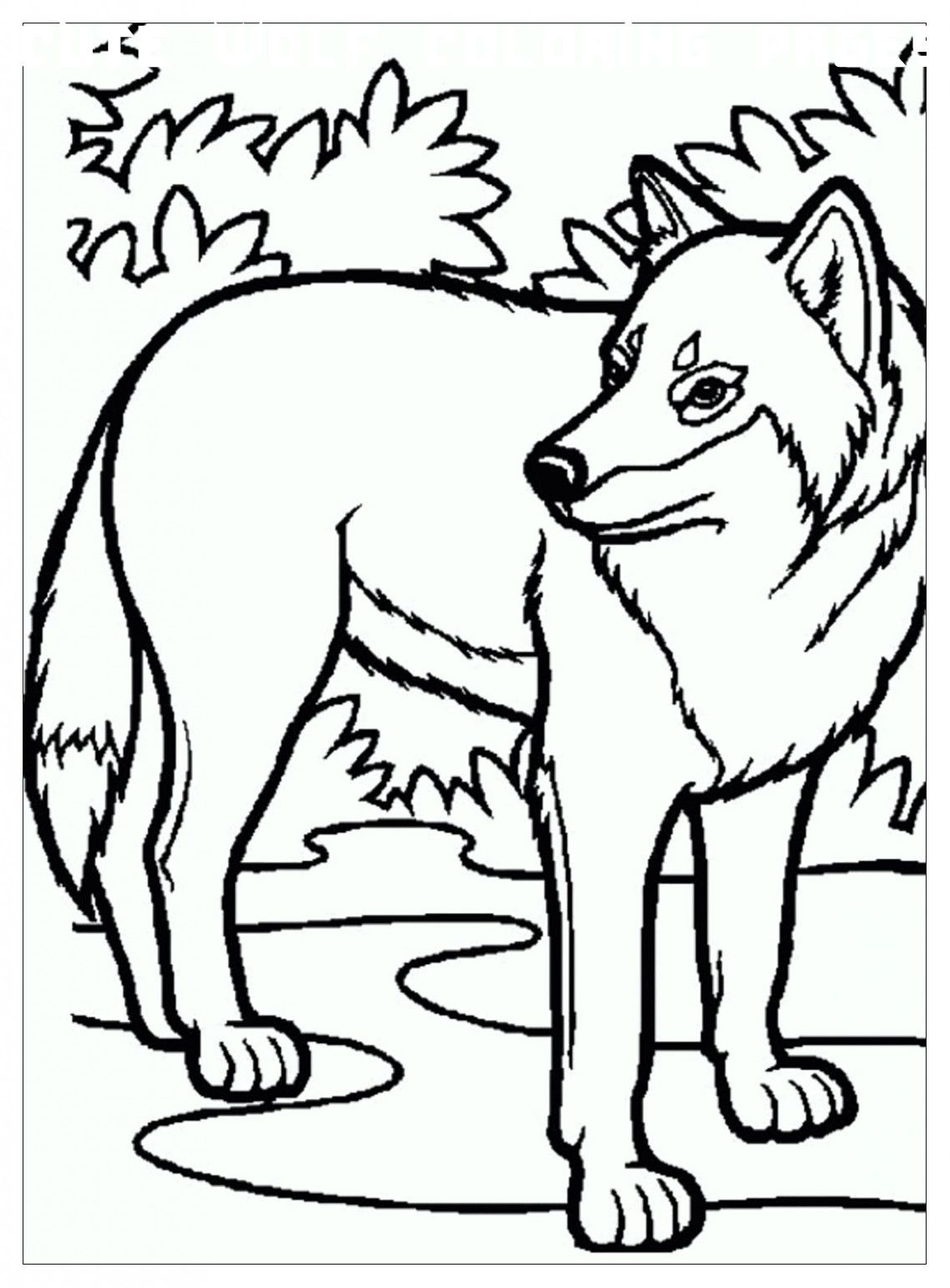 6 Cute Wolf Coloring Pages In 2020 Wolf Colors Animal Coloring Pages Horse Coloring Pages