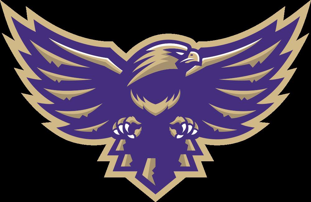 Pin Von Chris Basten Auf Hawks Falcons Logos