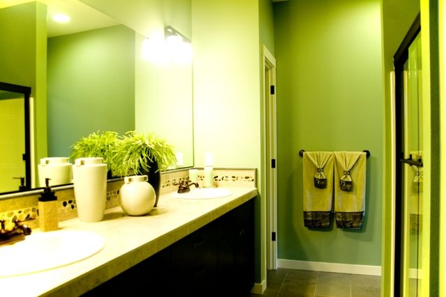 Love the green in this bathroom!