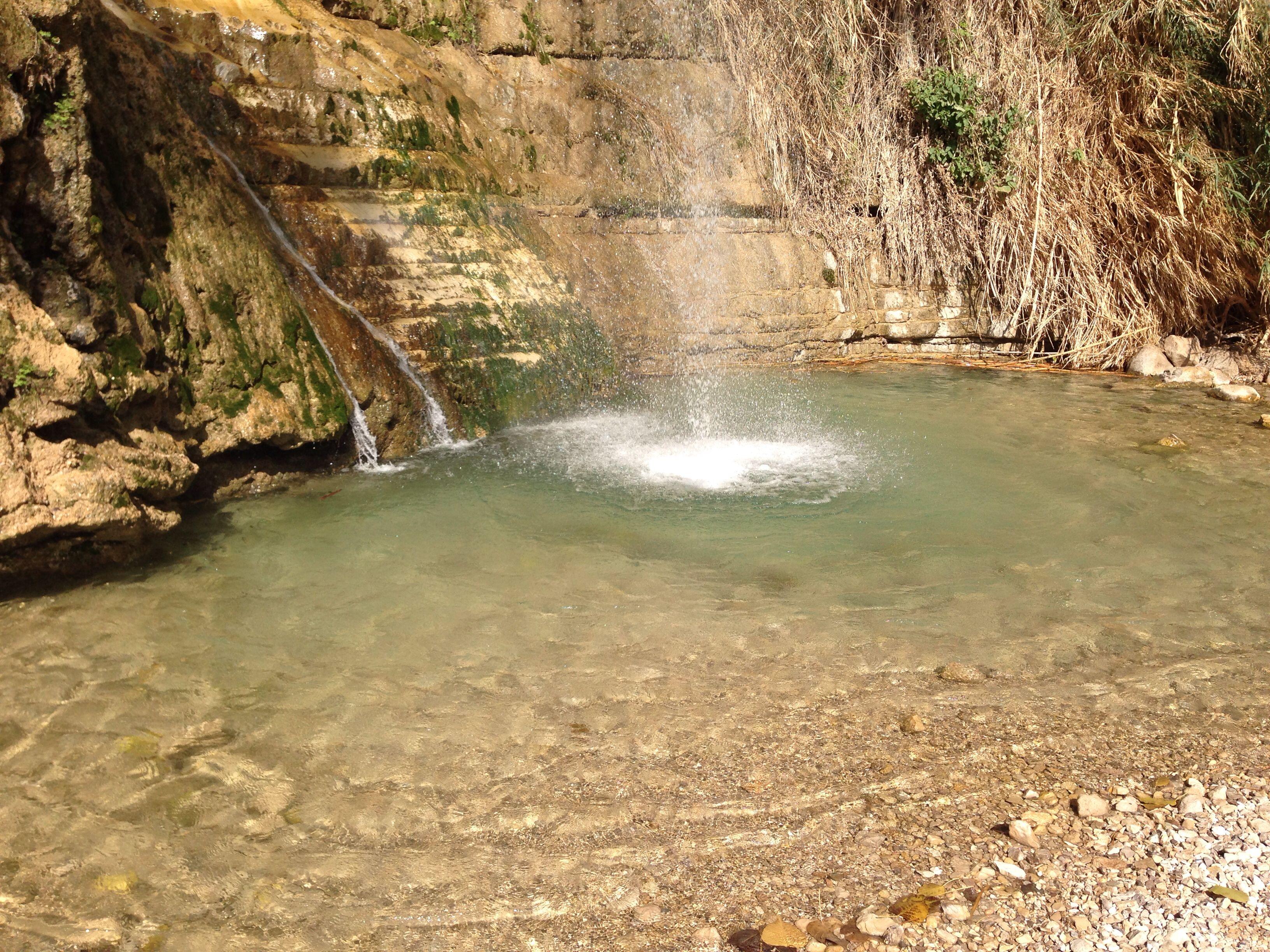 En Gedi ( near the Dead Sea in Israel)