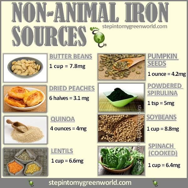 Non-Animal Iron Sources