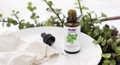 Peppermint Oil Repels Insects #TipOfTheWeek