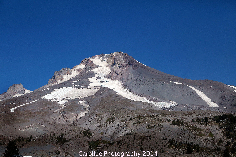 Mt Hood  Carollee Photography