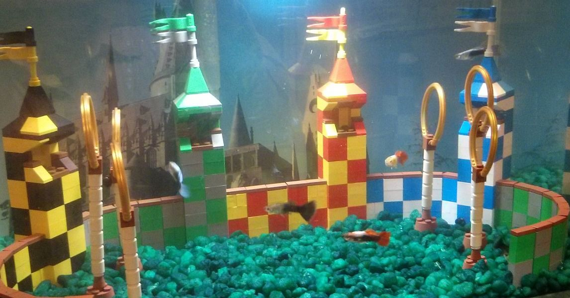 Your House Is Missing A Quidditch Aquarium Harry Potter