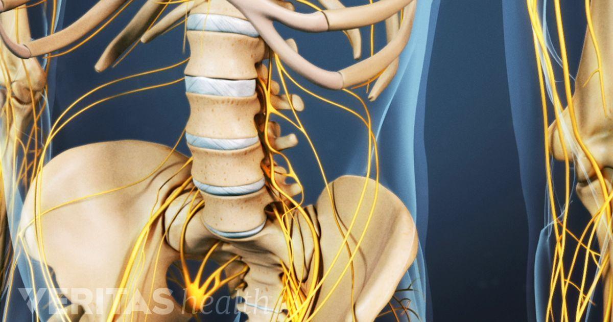 Estiramientos dolor lumbar