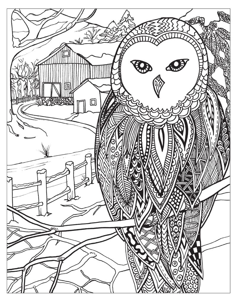 Zendoodle Coloring Winter Wonderland Coloring Pages Winter Owl