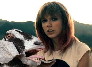 Mash Up Of Taylor Swift S I Knew You Were Trouble And The Screaming Goats Crying Laughing L Taylor Swift Music Videos Taylor Swift Hair Taylor Swift Songs