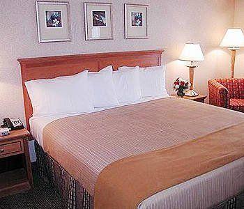 Holiday Inn Express Simply Smart Firm Standard Complete Pillow Set 4 Pillows Reungit Store Firm Pillows Pillow Combos Bed Pillows