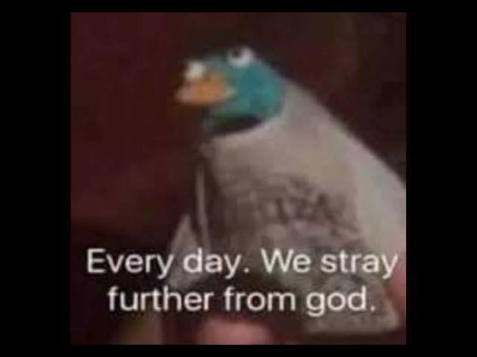 Every Day We Stray Further From God Memes Funny Memes Dankest Memes She does this every single week sign up for her free training here. memes funny memes dankest memes