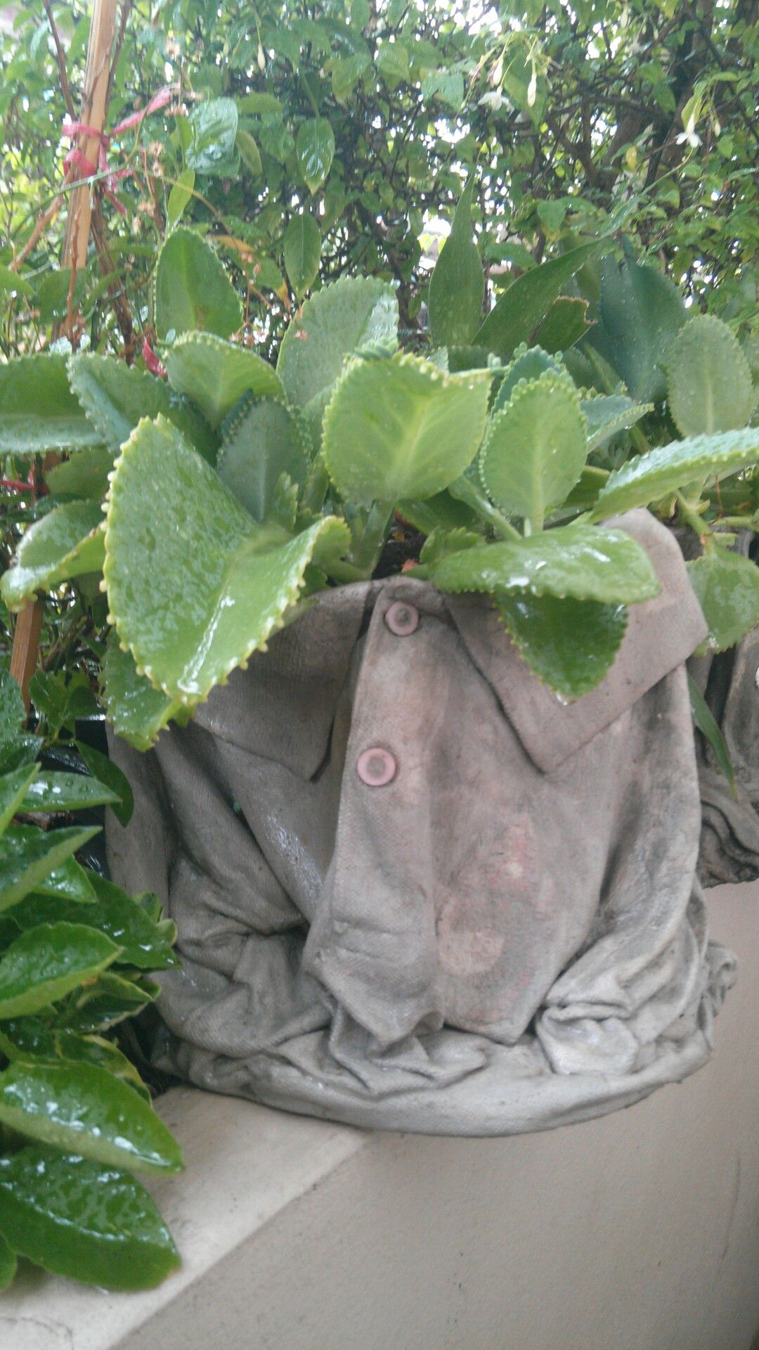 Fabric cement betonbearbeitung pinterest see more best ideas about planters shirts and - Cement cloth garden ornaments ...