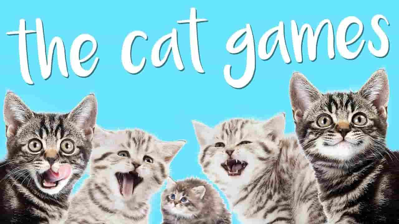 Cat Games For Cat And Kittens That Will Go Crazy Catsfud Kitty Games Cats Crazy Cats