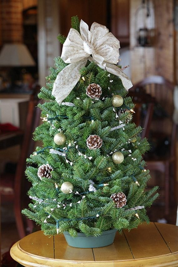 Decorated Miniature Christmas Trees Tabletop Tree Decorating Ideas Family Holiday