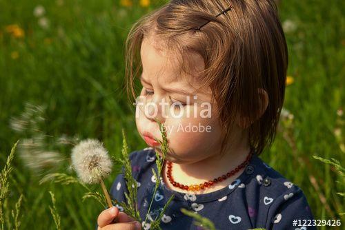 """Laden Sie das lizenzfreie Foto """"Pusteblümchen"""" von Photocreatief zum günstigen Preis auf Fotolia.com herunter. Stöbern Sie in unserer Bilddatenbank und finden Sie schnell das perfekte Stockfoto für Ihr Marketing-Projekt!"""