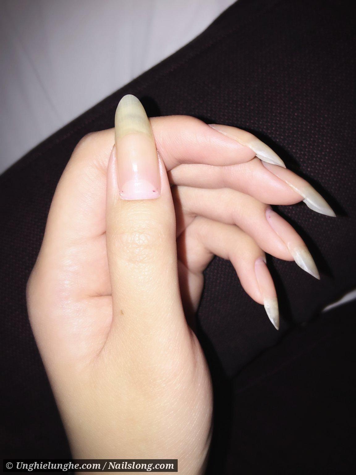 82375 Jpg 1152 1536 With Images Natural Nails Long Natural Nails Natural Acrylic Nails