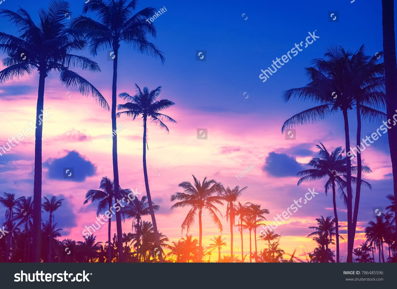 Copy Space Of Silhouette Tropical Palm Tree With Sun Light On Sunset Sky And Cloud Abstract Backgro Abstract Backgrounds Nature Travel Adventure Sky And Clouds Tropics palm trees sunset clouds sky