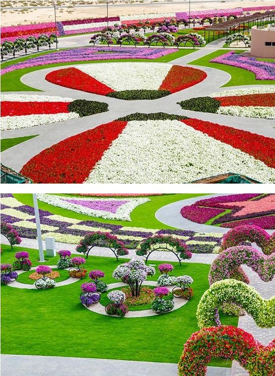 new attraction in dubai, the world's biggest flower garden