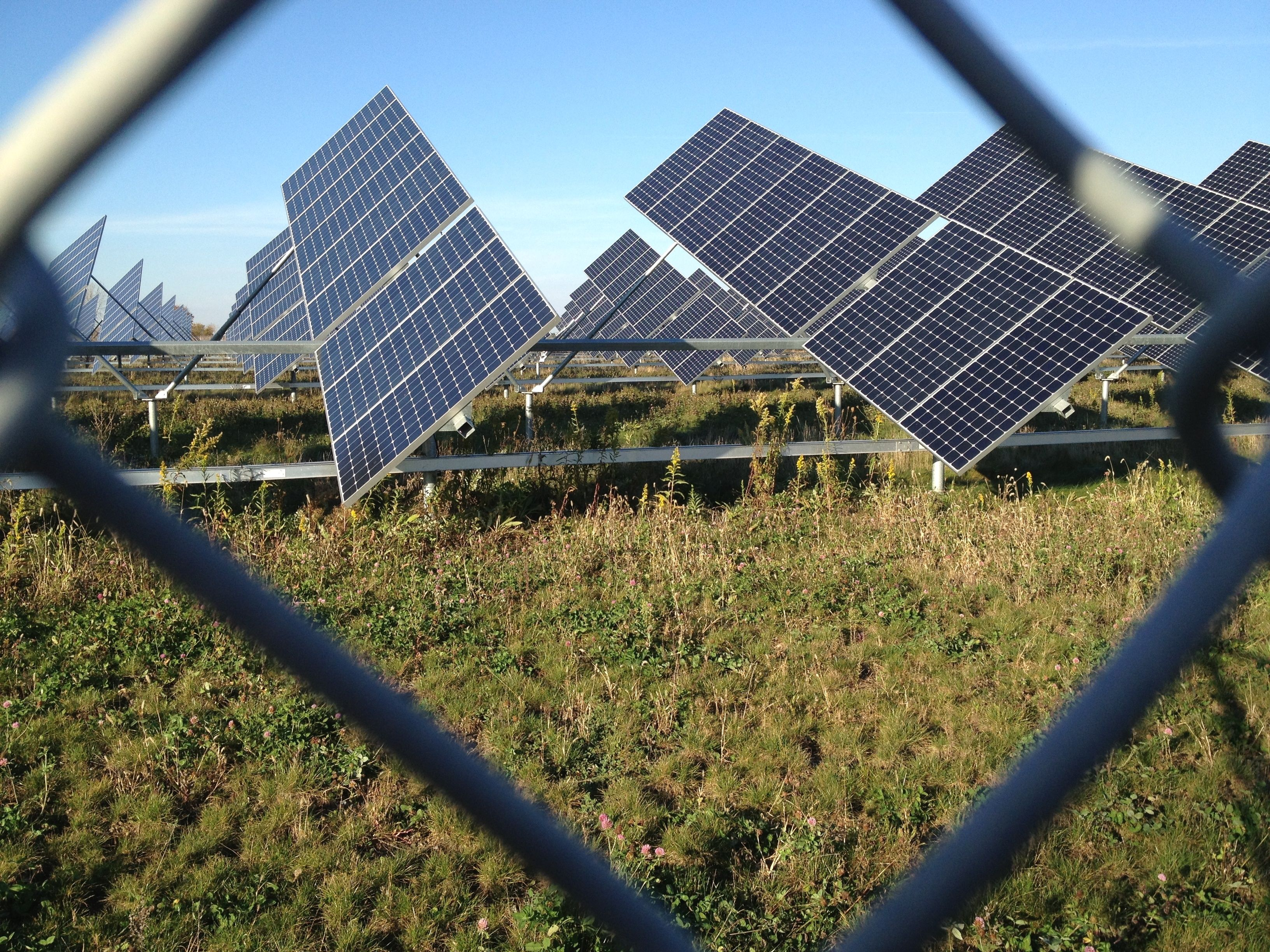 Need useful information and some tips on green energy Solar