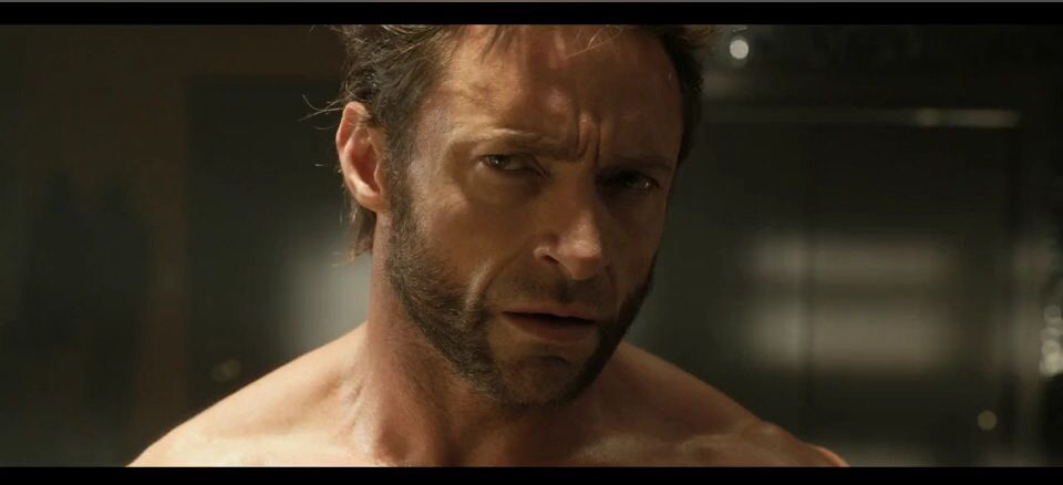 X Men Days Of Future Past The Rogue Cut BluRay Remux Espanol Latino