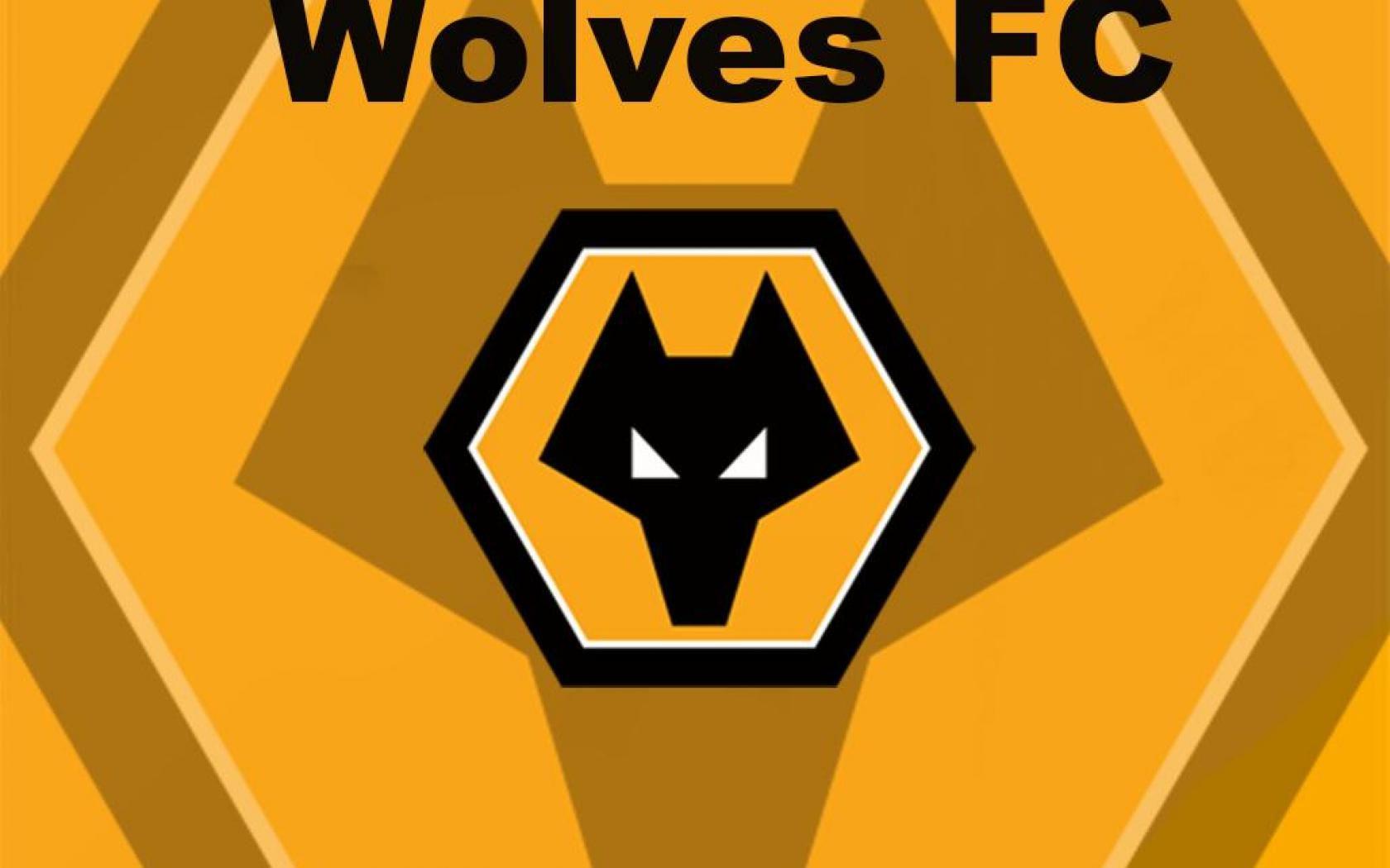 image result for wolves fc matthew worrall pinterest