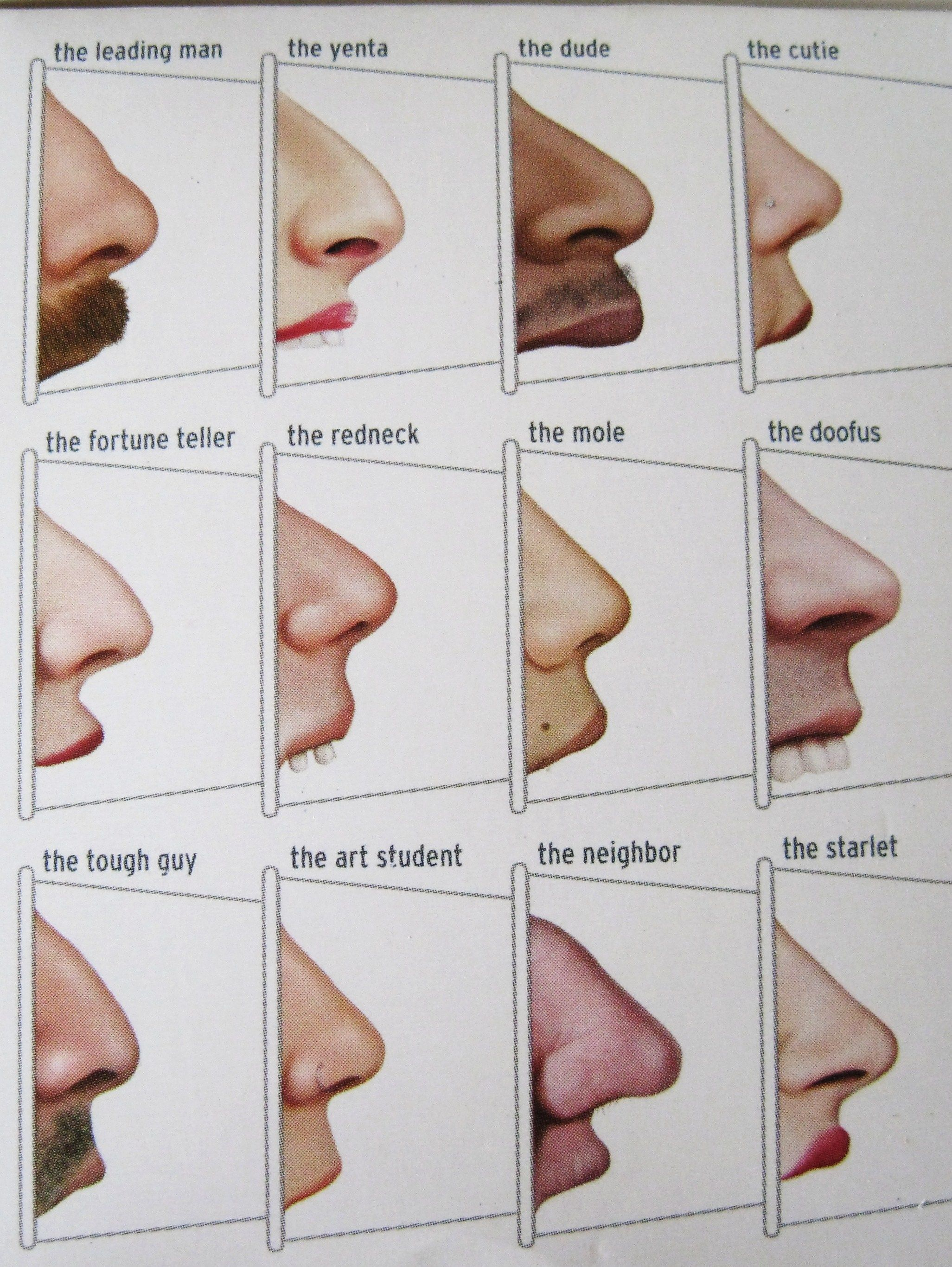 nose shapes and names - HD2053×2733