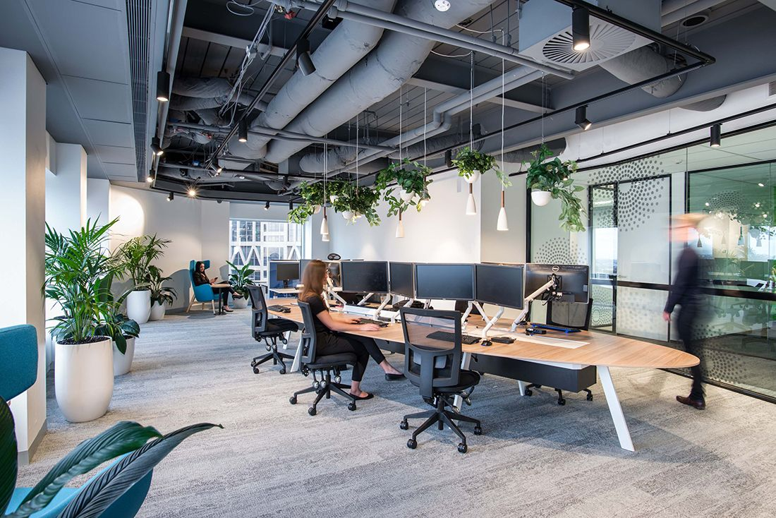 University Of Sydney To Launch Study On Activity Based Working Indesignlive Interior Design Courses Online Boutique Interior Design Workspace Design