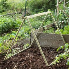 Beautiful Diy Garden Trellis   How To Build A Cucumber Trellis