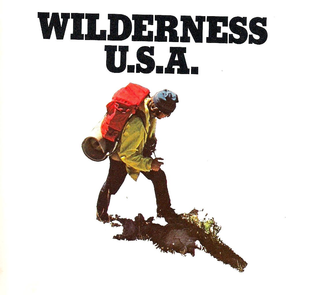 Pin by Benjamin Nalder on Oak Wilderness, Logo mark
