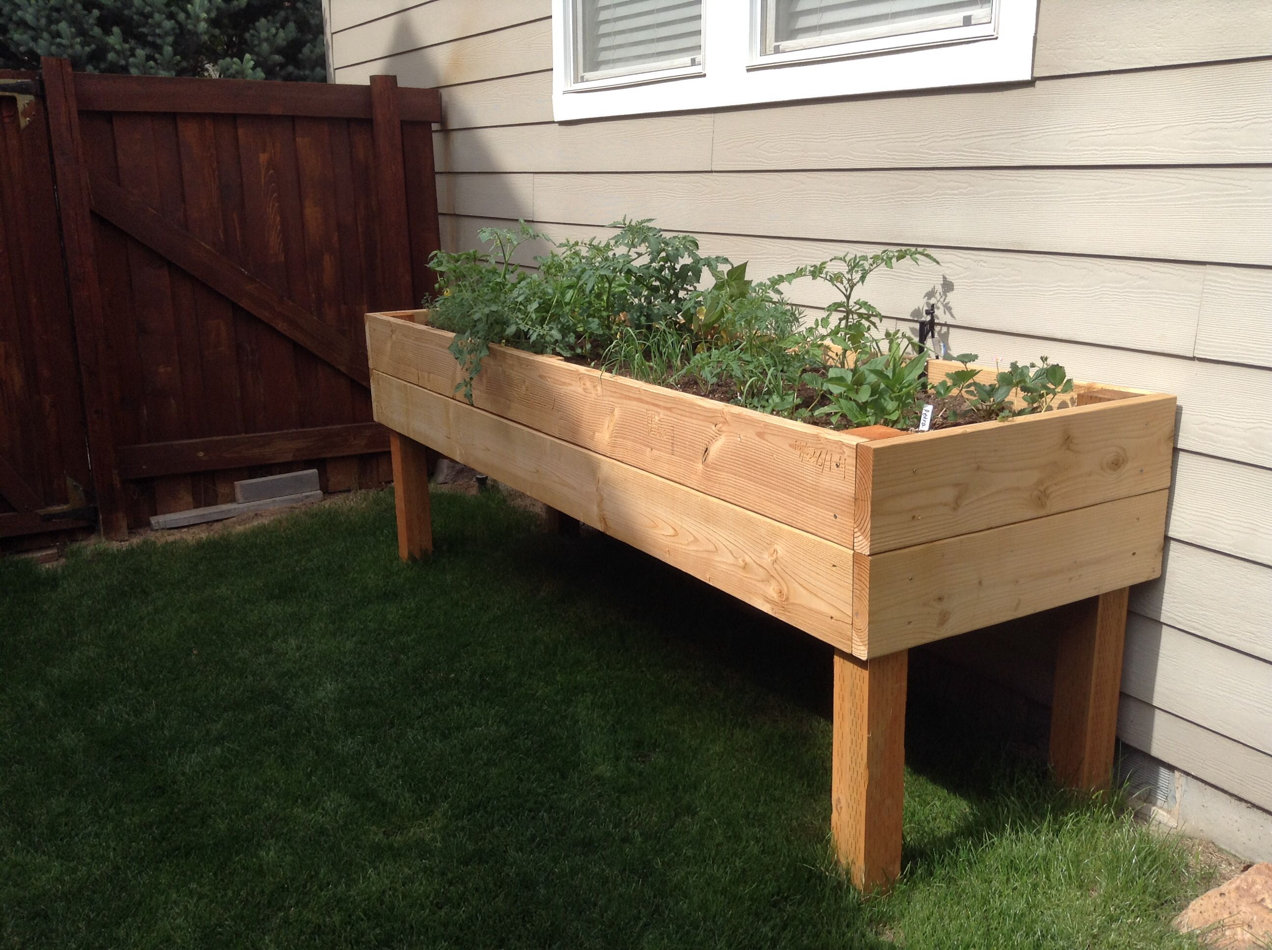 Homemade raised garden bed Raised garden beds, Garden